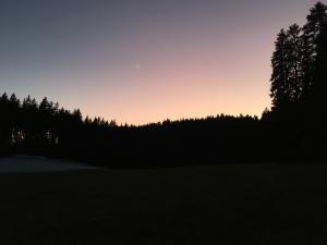 Sonnenuntergang in schwarz lila mit Bäumen und Bergen